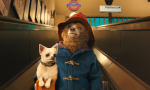 Paddington Bear and his adventures!