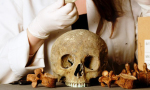 A research team at the Museum of London are going to research the effect of industrialisation on Londoners by examining old bones. Credit@Museum of London