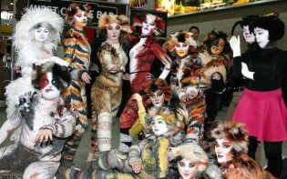 Musical CATS cosplay group-MCM_CC_London 2014 (6)